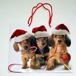 Giftbag With Dachshunds