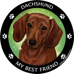 Red Dachshund My Best Friend Magnet