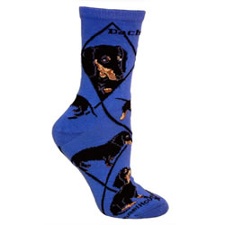 Black/tan Dachshunds On Indigo Socks